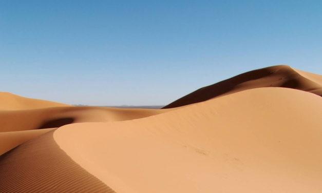 Virtual Dakar: le jeu online