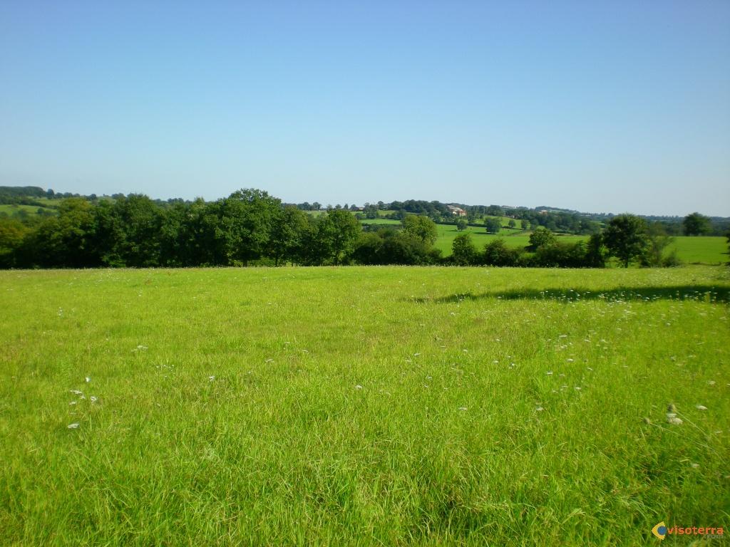 Visoterra-paysage-champs-8250