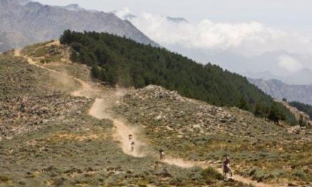 Quel pneu moto Continental choisir pour du trail ?