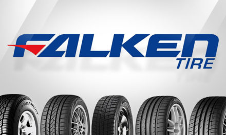 Falken : revue de gamme