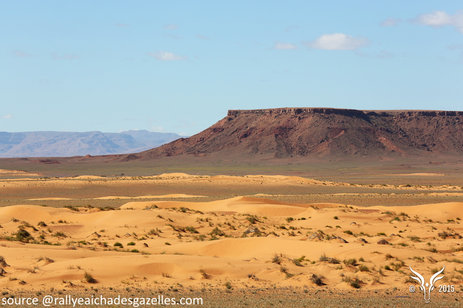 Le Rallye Aïcha des Gazelles, la 30ème